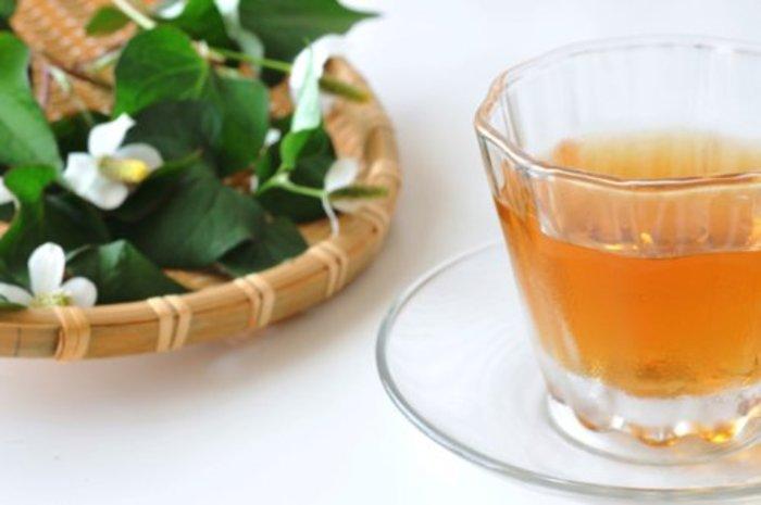 サラシア茶ダイエットの効果と成功するやり方や口コミ!